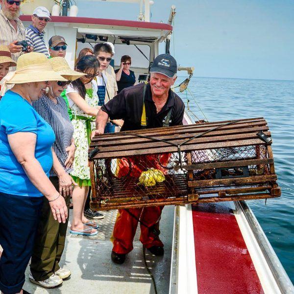 Lobster-tours-with-Joeys-Deep-Sea-Fishing-600x600